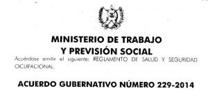 Acuerdo Gubernativo Número 229-2014
